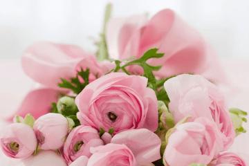 Рози и ароматерапия